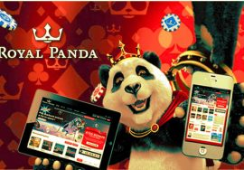 Royal Panda Online Sports Betting