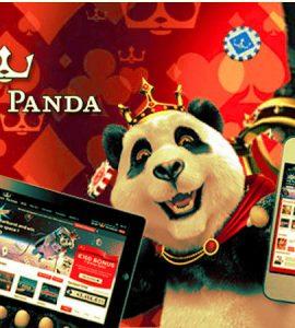 Royal Panda Online Sports Betting